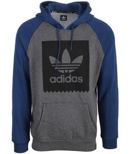 Adidas Blackbird Raglan Hoodie