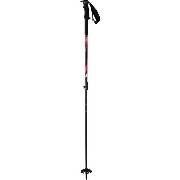 Atomic BCT Ski Poles