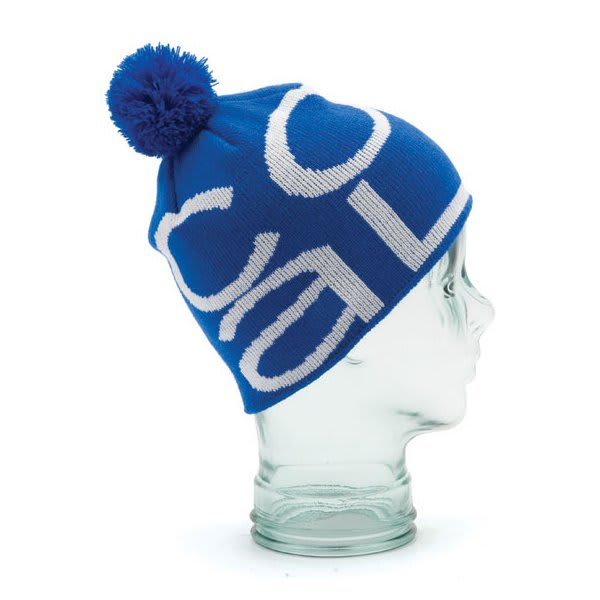 Coal The Logo Beanie