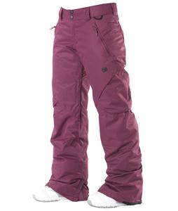 DC Ace Snowboard Pants Dark Purple