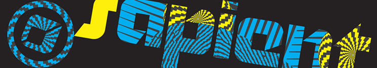 2012 Sapient Snowboard Boots