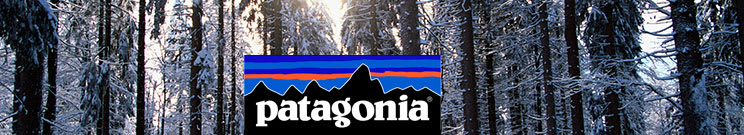 Patagonia First Layer Bottoms