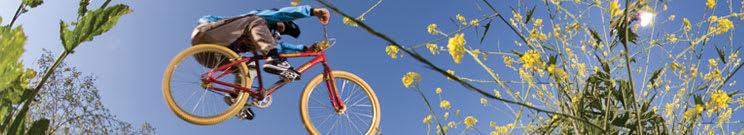 Bike Tire Tubes