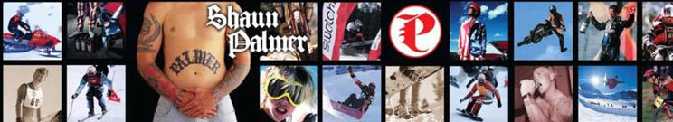 Discount Palmer Snowboards