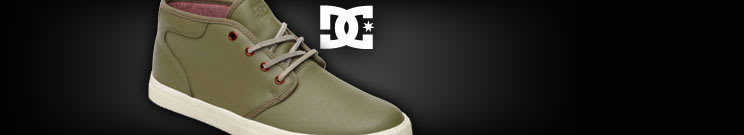 DC Casual Shoes
