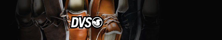 DVS Casual Shoes
