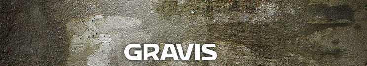 Gravis Casual Shoes