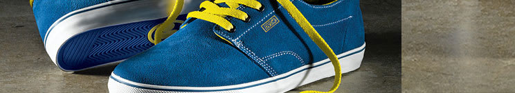 DVS Skate Shoes