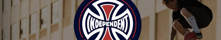 Independent Skateboard Bearings