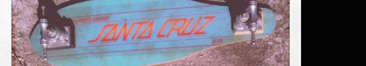 Santa Cruz Complete Skateboards