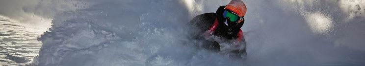Dakine Ski Accessories