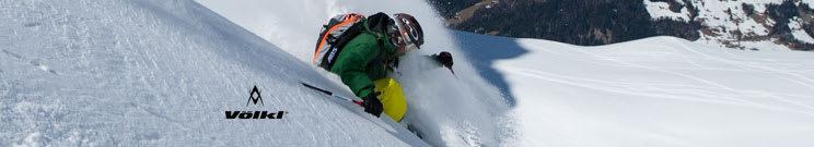 Volkl Ski Poles