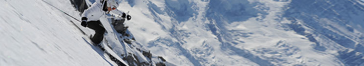 Hybrid Skis
