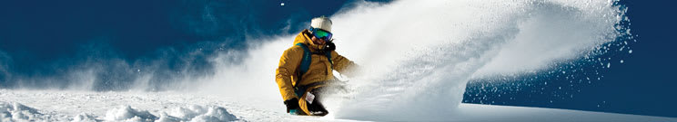 Dakine Snowboard Mittens