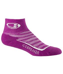 Icebreaker Run Plus Mini Light Cushion Socks