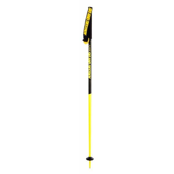 Line Tac Ski Poles