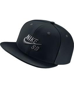 Nike SB Icon Pro Cap
