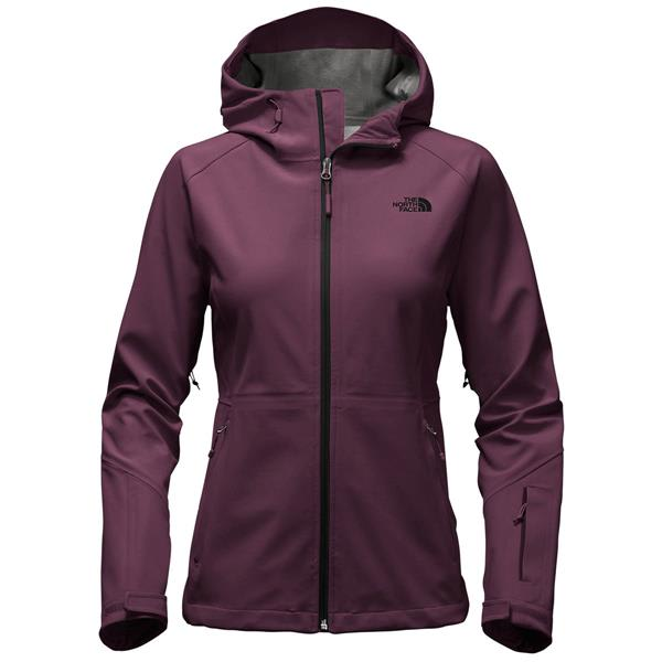 The North Face Apex Flex GTX Jacket