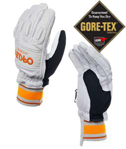 Oakley Factory Winter Gore-Tex Gloves Crystal Gray