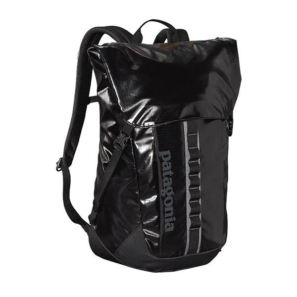 Patagonia Black Hole 32L Backpack