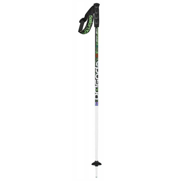 Salomon Brigade Team Ski Poles