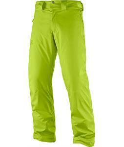 Salomon Stormrace Ski Pants