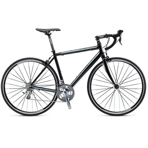 Schwinn Fastback 1 Bike