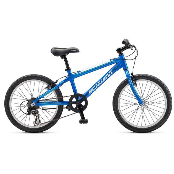 Schwinn Mesa 20 Bike Kids Youth