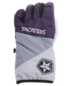 Sessions Arctic Gloves Purple