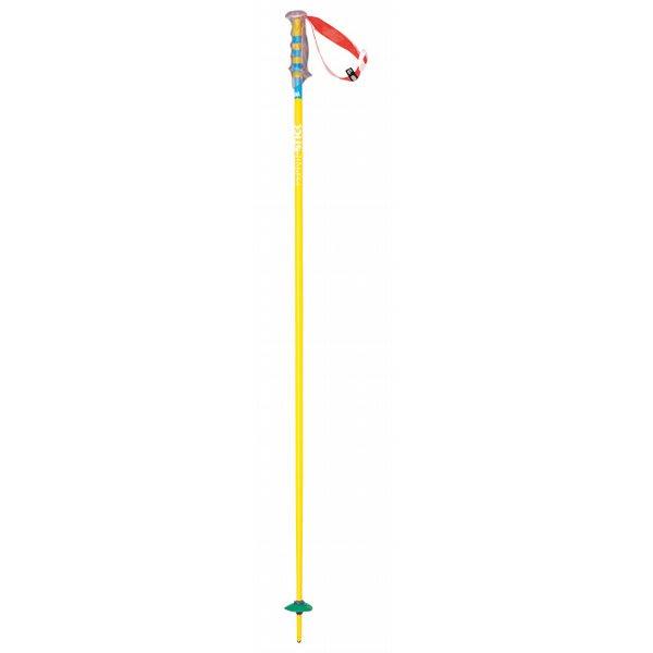 Volkl Phantastick Ski Poles