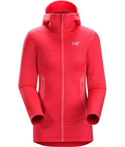 Arc'teryx Arenite Hoody Fleece