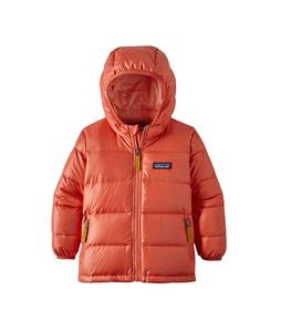 Patagonia Baby Hi-Loft Down Sweater Hoody Jacket