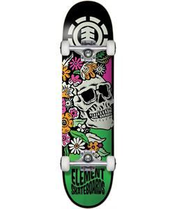 Element Aloha Skateboard Complete