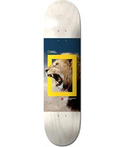 Element x National Geographic Nyjah Lion Skateboard Deck