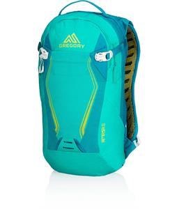 Gregory Amasa 6 3D Hydro Backpack