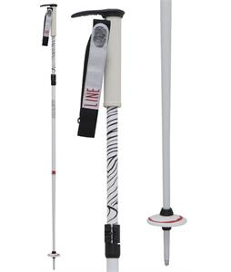 Line Pollard's Paint Brush Ski Poles