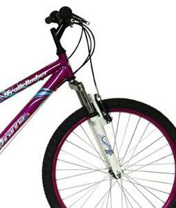Women's Bike Shop, Ladies Bikes, Bicyclces | The-House com