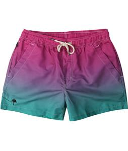 Oas Purple Grade Boardshorts