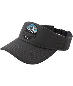 Patagonia Fitz Roy Scope Visor Cap
