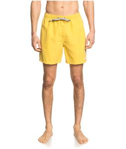 Quiksilver Surfwash Volley 17 Boardshorts