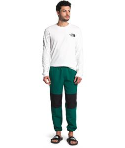 The North Face Class V Pants