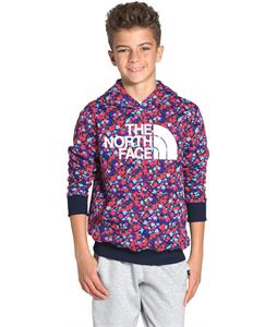 The North Face Logowear Pullover Hoodie