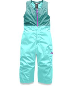The North Face Toddler Insulated Bib Ski Pants